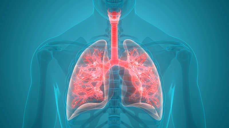 肺癌早期如何筛查?哪些人需要每年做胸部CT检查?医生告诉你答案