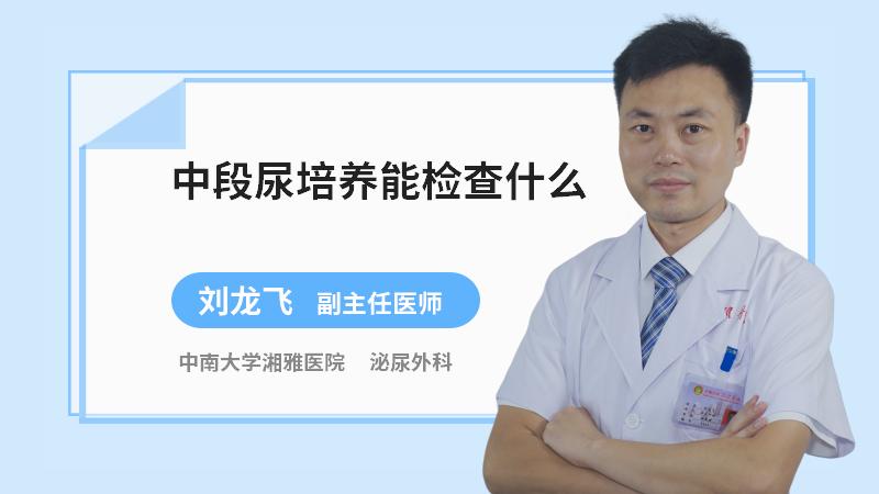 中段尿培养能检查什么