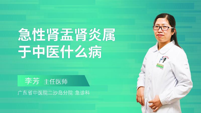 急性肾盂肾炎属于中医什么病