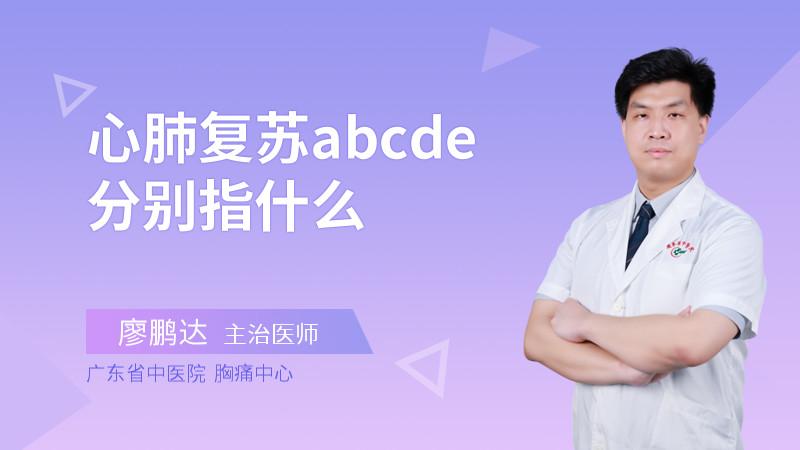 心肺复苏abcde分别指什么