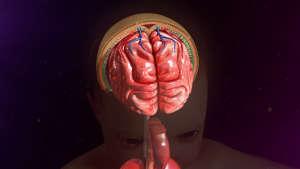 脑出血说来就来?身体出现3种症状,就要留意了