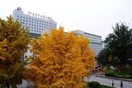 北京石景山医院