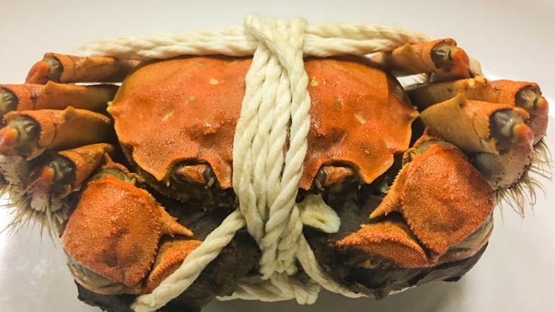 坐月子可以吃螃蟹吗
