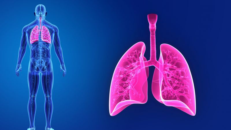肺炎种类以及如何预防肺炎