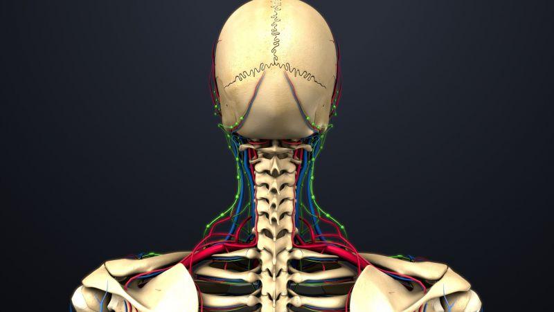 脊柱肿瘤与脊髓肿瘤如何鉴别,脊柱肿瘤如何诊断