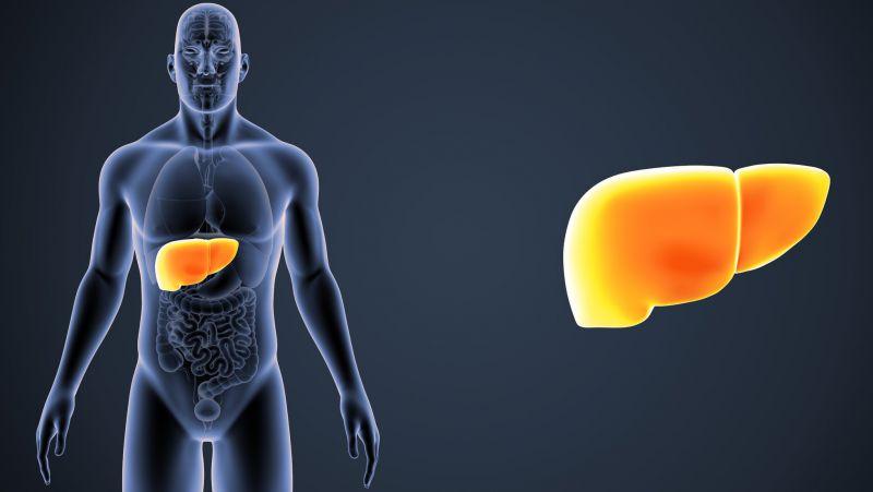 当肝功能异常时,嘴巴常有4个症状,若一个没占,说明肝脏健康