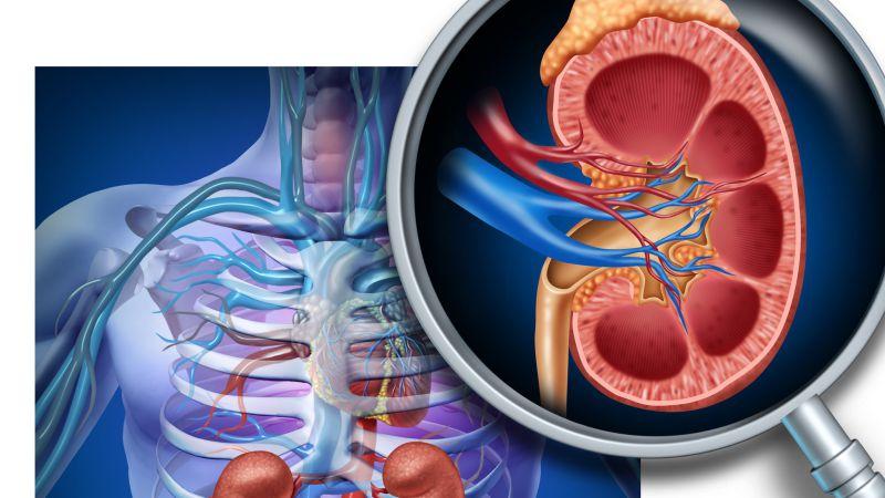复发IGA肾病应如何保养恢复?可以维持终身不尿毒症吗?
